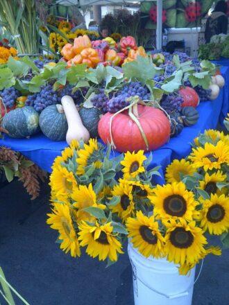 SB Farmer's Market