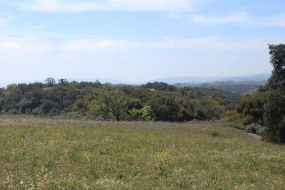 View toward the ocean from Rancho La Zaca