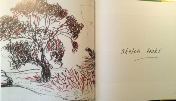 David Hockney landscape sketch