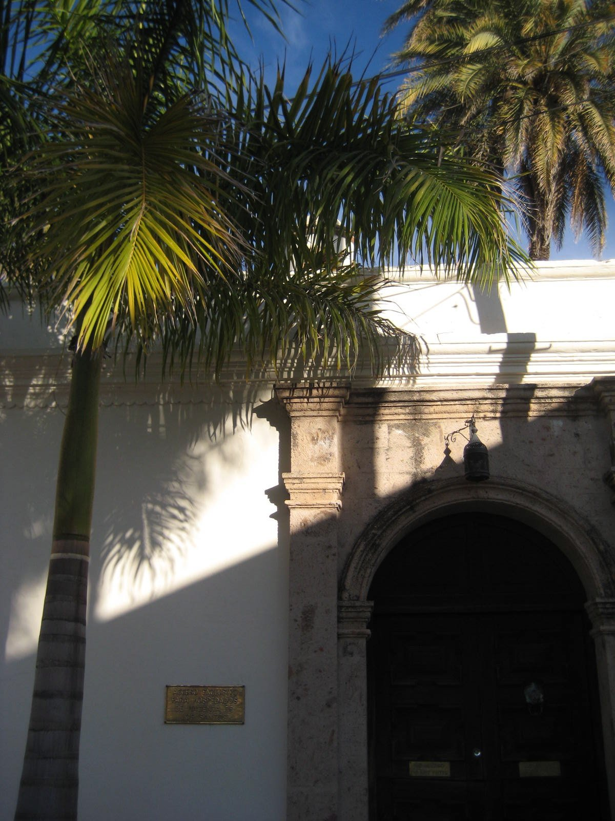 The Beautiful Old Houses of Alamos and a Rufous-Bellied Chachalaca - Mexico Part 3