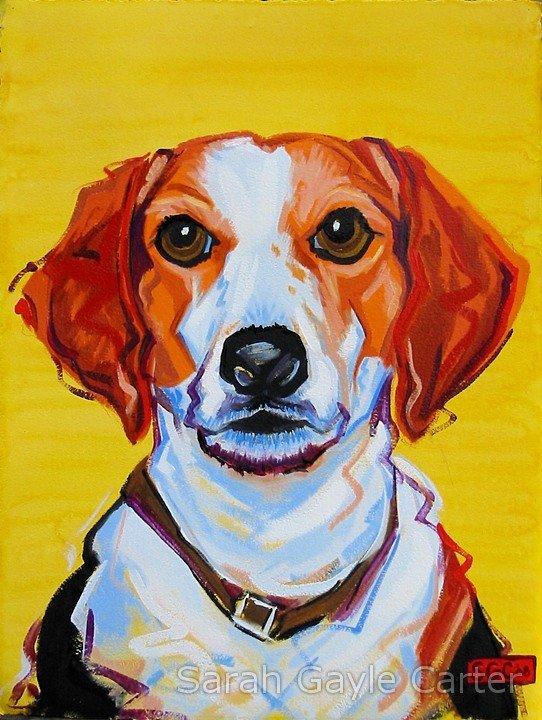 Bailey, by Sarah Gayle Carter