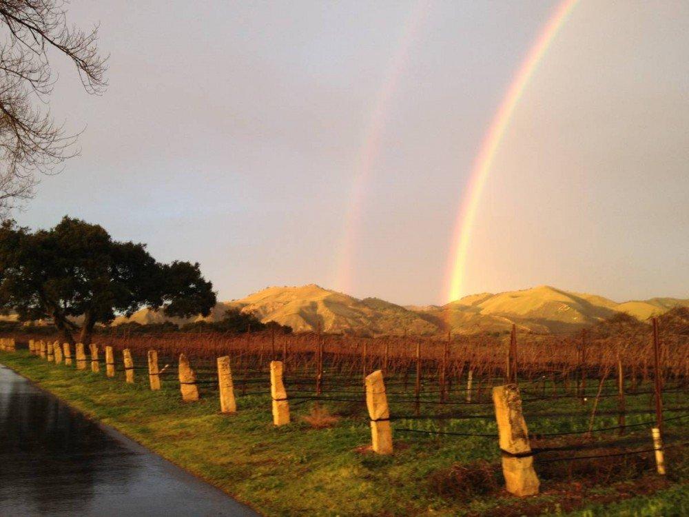 Double Rainbow Delight