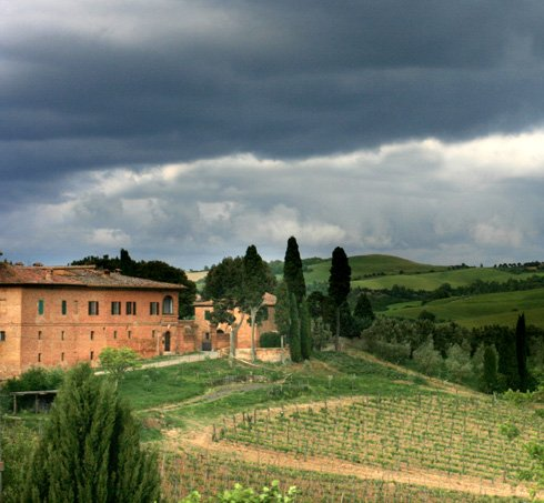 Postcard From Italy No. 1 - Florence, a Vineyard Visit and Delightful Lunch