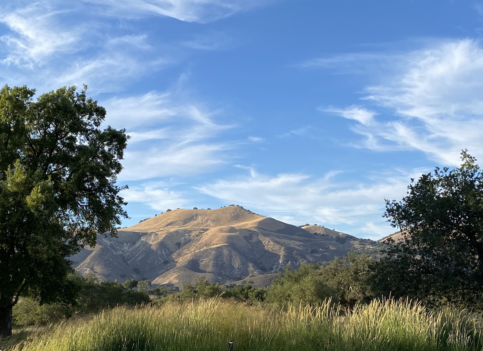 View from the entrance to Rancho La Zaca, where our retreat takes place